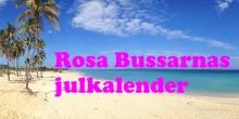 Rosa Bussarnas julkalender!