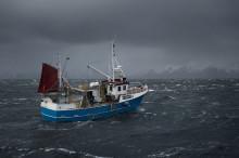 Nytt prosjekt skal gi kvalitetsløft i fiskerinæringen