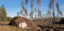 Bra för skogen men dåligt för åkern