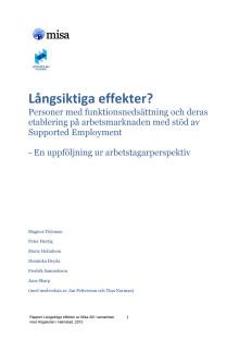 Långsiktiga effekter? Studie om personer med funktionsnedsättning och deras etablering på arbetsmarknaden
