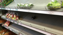 BLOG POST: Well, it happened! No veggies on the shelves!