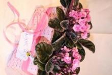 Alla hjärtans dag i ett rosa skimmer