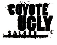 Get up close with Coyote Ugly Saloon – the world's most famous bar is open