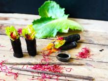 Cosmopolitansallat, en ny variant av sushi!