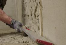 Weber dry renovation