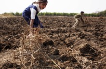 IKEA Foundation och Rädda Barnen utökar insatser mot barnarbete – 63 miljoner kr till hjälp för 790 000 indiska barn