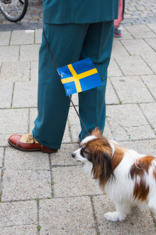 Fler av Malmös äldreboende firar nationaldagen