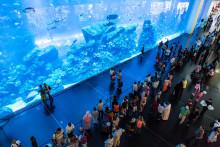 Gigantiske kjøpesentre lokker stadig  flere turister!