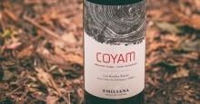Nu släpps Coyam 2015