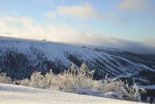Rekordmånga svenskar bokar skidresa