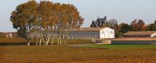 Besök Bordeaux i skördetider  - Exklusiv vinresa med Winefinder.se