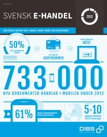 Svensk e-handel 2013