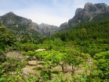 Christopher Somerville Walking in Mallorca: Day 3 & 4