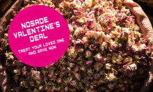 NOSADE Valentine's DEAL – Treat your loved one & SAVE NOW!