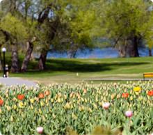 Green Landscaping blir en av Sveriges största aktörer inom skötsel och anläggning av utemiljö