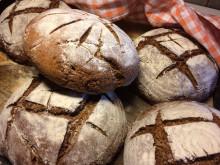 Det goda brödet – historiens roll i framtidens bröd