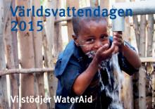 Världsvattendagen 2015