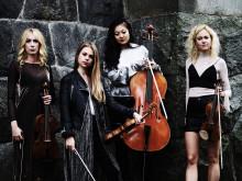  Rosa kvartetten på Hallwylska museet