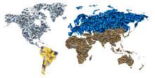 Unique Global Footprint