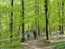 Boka konferens och njut av våren i Halland!