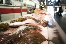 Fisk skulle kunna förhindra Parkinsons sjukdom