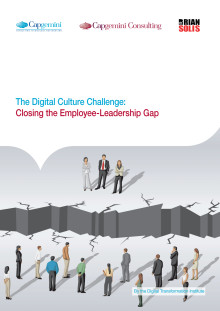 The Digital Culture Challenge Report