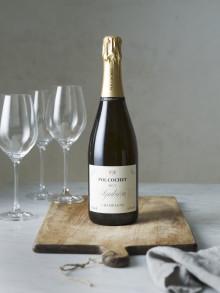 Ny ekologisk Champagne Pol Cochet Symbiose NV