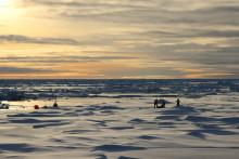 Norsk-svensk forskningsexpedition med isbrytaren Oden
