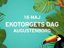 Pressinbjudan: Välkommen till Malmös mest hållbara torg