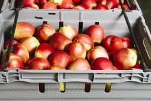 Livsmedelsgrossisterna ansluter sig till Svenska Retursystem