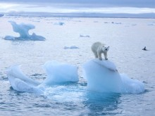 Take an 'Arctic Adventure & Exploration' on Fred. Olsen Cruise Lines' Boudicca in summer 2015