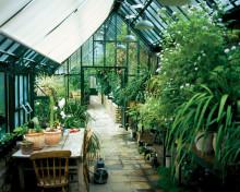 Hartley Botanic växthus överlägsna