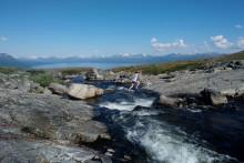 Biologiska processer påverkar hur arktiska vattendrag avger koldioxid