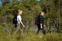 Bråvikslandet – en vandringsdestination som är på gång!