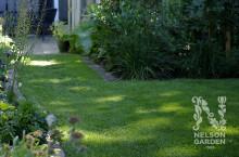 Återställ din gräsmatta