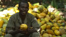 Mondelēz International presenta el informe de  progreso de su programa de sostenibilidad 'Cocoa Life'