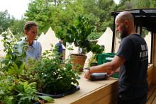 Peter Larsen Kaffe etablerer Nordeuropas første kaffefarm i Danmark
