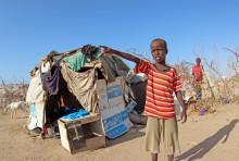 Weltflüchtlingstag: Warum trotz der Flüchtlingsströme Kleingruppen-Betreuung Sinn macht