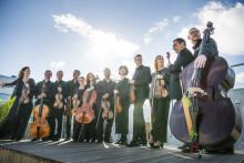Inbjudan till presstillfälle: presentation av Musica Vitaes höstsäsong 2017