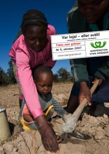 Rapport: Var lojal - eller svält! Vittnesmål inifrån svältens Zimbabwe.