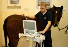 Sveriges första ISELP-certifierade veterinär