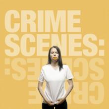 Det handlar inte om rån, mord eller kvinnomisshandel