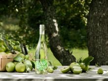 Fizzy LOVE – med bubblande fräschör och smak av äpple