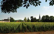 Nu lanseras Laurent-Perrier La Cuvée Brut – en unik huschampagne av högsta klass