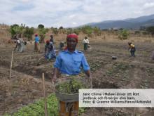 Kvinnliga småjordbrukare har nyckeln till att minska hungern i världen