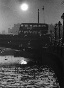 Fullersta Gård ställer ut Hans Hammarskiölds fotografier