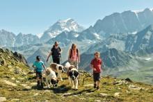 Sommerliche Naturerlebnisse im schweizerischen Wallis