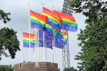 Sex, NO drugs & rock'n'roll i Pride Park