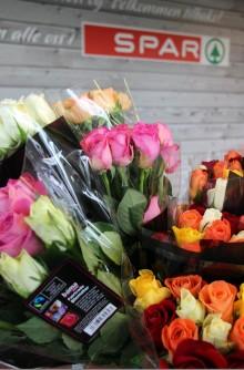 Doblet rosesalget med Fairtrade