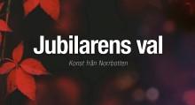 Nu blir det konst-igt för Luleå kommuns 25-årsjubilarer! Träffa dem när de väljer sina minnesgåvor på Kulturens hus.